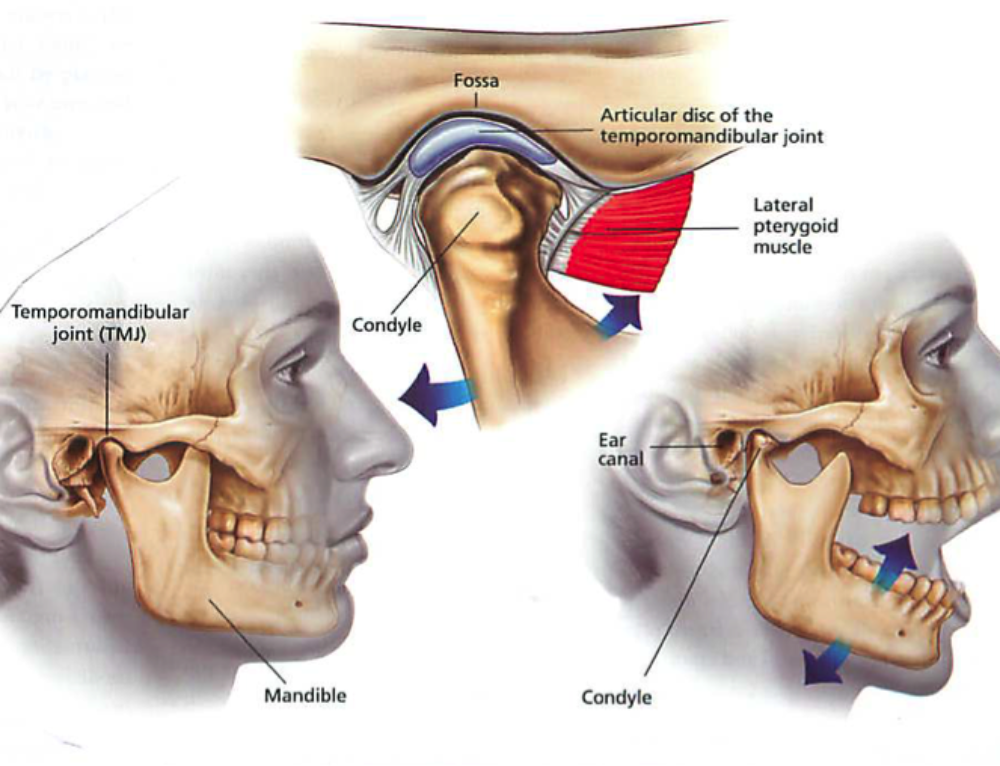 TMJ Symptoms, Causes, and Treatments